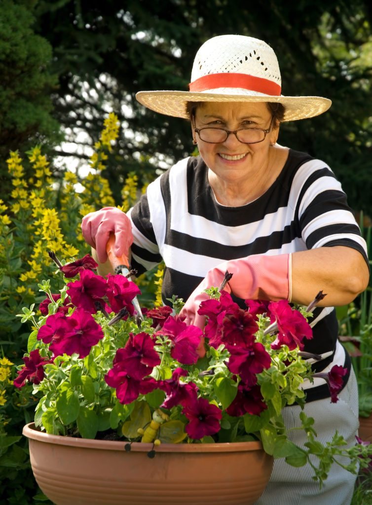 Home Care Services in Islip NY: Helping Seniors in the Garden